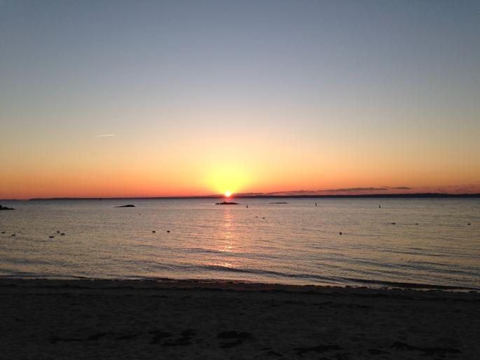 Rye Sunrise